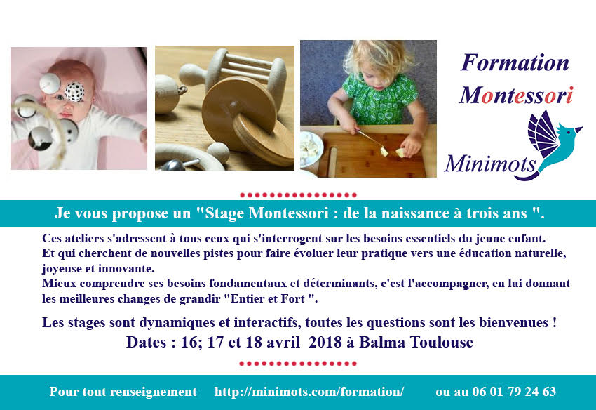 Formation Montessori Toulouse