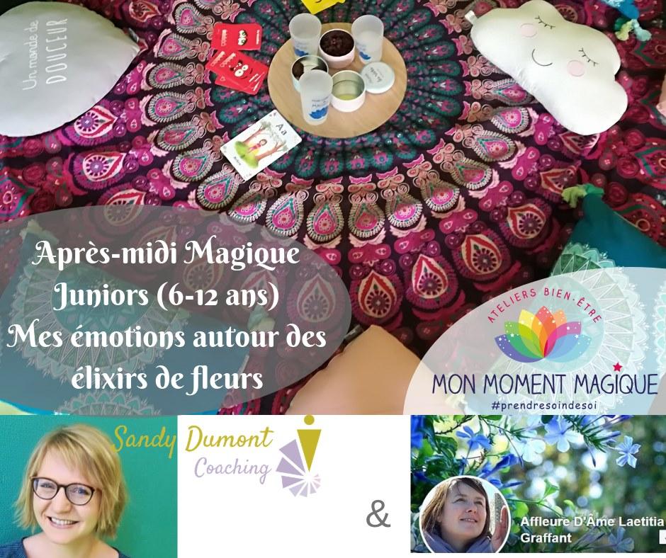 Atelier Magique Fleurs de Bach Toulouse Aout