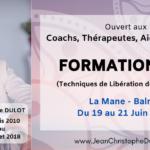 Formation EFT à Toulouse Devenir Praticien EFT à Toulouse La Mane Balma