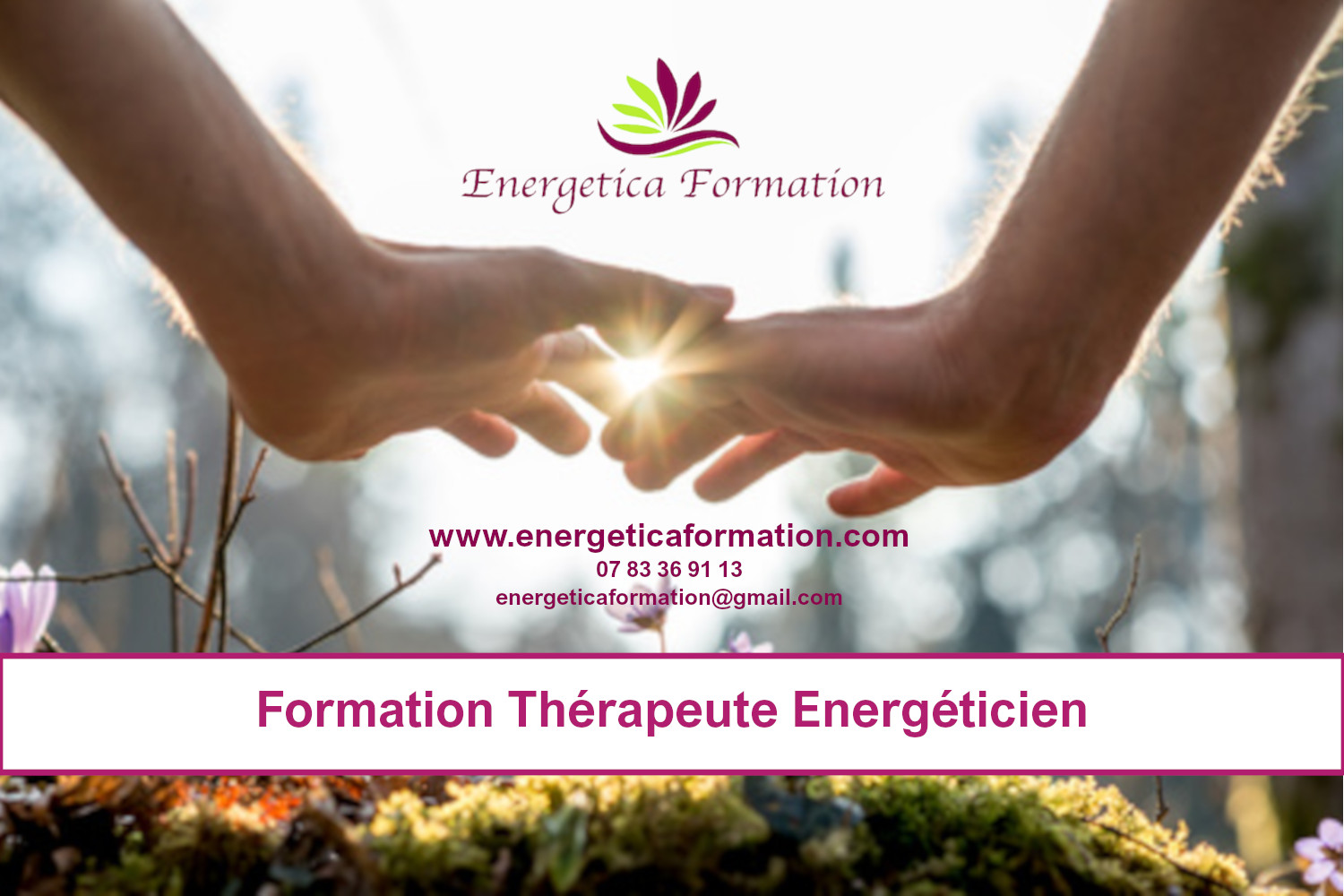 Formation energeticien Toulouse Balma Juin 2021